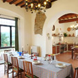 Apartments, villa, holidays in Chianti, Tuscany